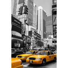 США НЬЮ-ЙОРК 015