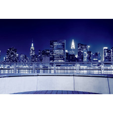 США НЬЮ-ЙОРК 039